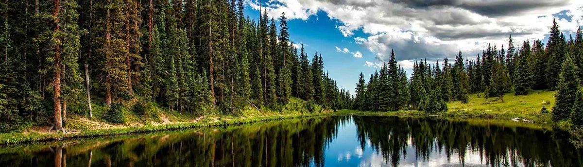 lake-irene